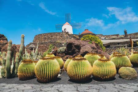 View of cactus garden, jardin de cactus in Guatiza, popular attraction in Lanzarote, Canary islands