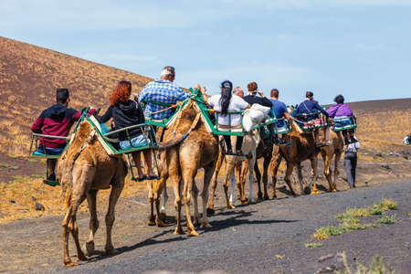 Timinfaya National Park, Lanzarote Island, Spain - March 30, 2017: Tourists riding camels in Timanfaya National Park. Camel trek is popular attraction on Lanzarote island.