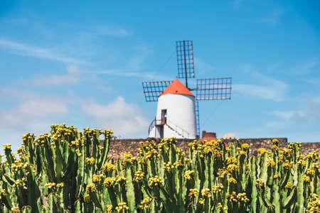 Windmill in cactus garden in Guatiza village, popular attraction in Lanzarote, Canary islands