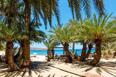 東クレタ島、ギリシャの美しいヤシの林とヴァイの有名なビーチ 写真素材