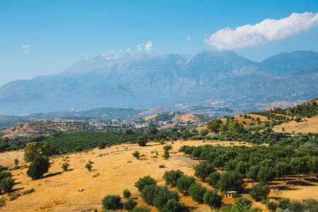 Beautiful mountain landscape with olive plantation, Crete Island, Greece