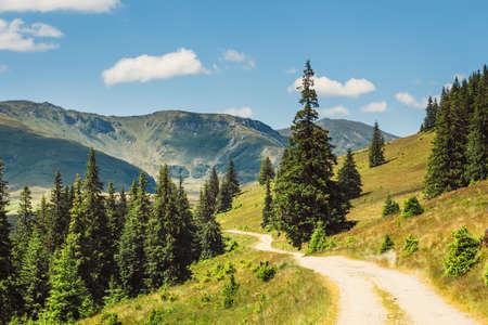 東部カルパチア人、ルーマニアのロドナ山脈の美しい夏の風景