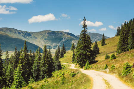 Beautiful summer Landscapes of Rodna Mountains in eastern carpathians, romania 스톡 콘텐츠