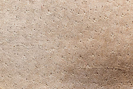 Chamois leather texture can use as natural background
