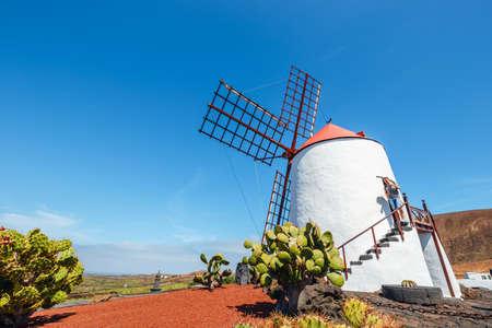 LANZAROTE - March 29, 2017: View of cactus garden with white windmill in Guatiza, popular attraction in Lanzarote, Canary islands Zdjęcie Seryjne - 128137641