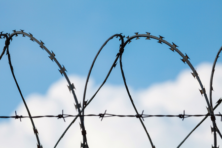 guantanamo: Barbed wire fence of restricted area Stock Photo