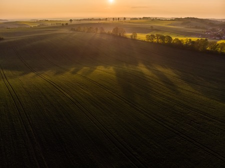 Aerial view of sunrise ofer green grain field Stockfoto
