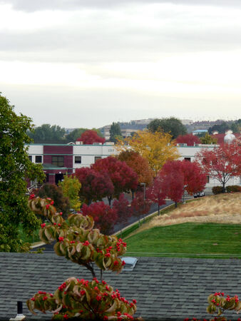 LEWISTON  IDAHO STATE USA- Rainy day in valley          07 OCTOBER 2014