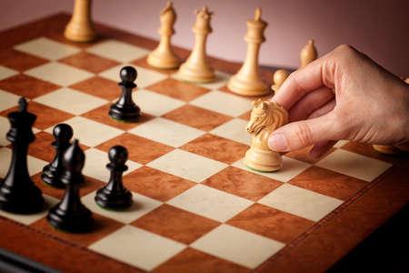 ajedrez: Mano masculina mover el caballo de ajedrez blanco tallado en madera de boj natural en foco con burl de lujo del olmo y el ojo del tablero de ajedrez de arce superiores del ave durante el juego del ajedrez