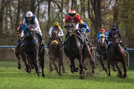 WROCLAW, POLAND - APRIL 15; 2018: Race for four years and older horses III group at Racecourse WTWK Partynice. The opening day of the season. Editorial