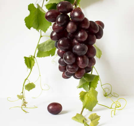 Grapes on a white background. a bunch of grapes Banco de Imagens
