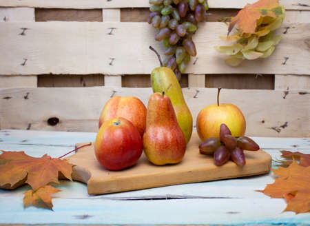 Thanksgiving background Apples, pears, pumpkin grapes on a background backdrop. Thanksgiving Halloween