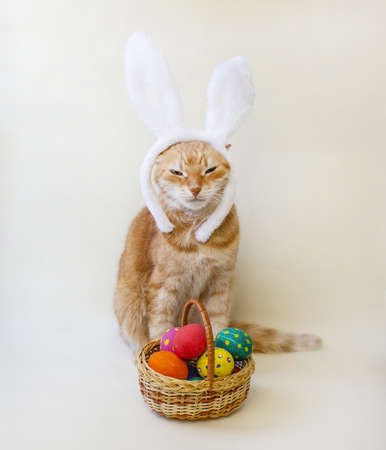 Easter eggs. Happy easter card. Multi-colored Easter eggs and rabbit. Easter eggs on a light background. Easter greetings. Happy easter. Rabbit cat. Copy space