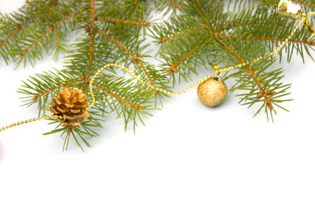 Holiday christmas background. Winter holiday composition with a New Year mood. Spruce and balls. Isolate Banner. copyspace