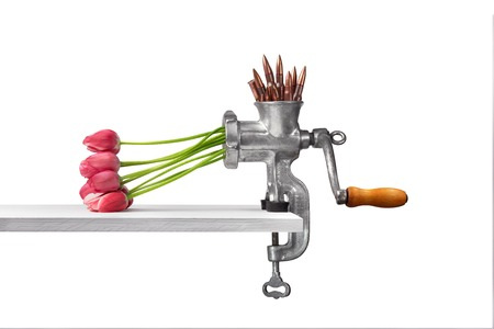 Arms and flowers in a meat grinder on a white background Stock Photo