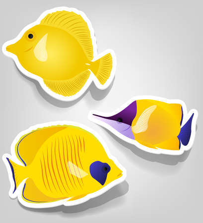 a set of tropical fish for advertising diving Иллюстрация