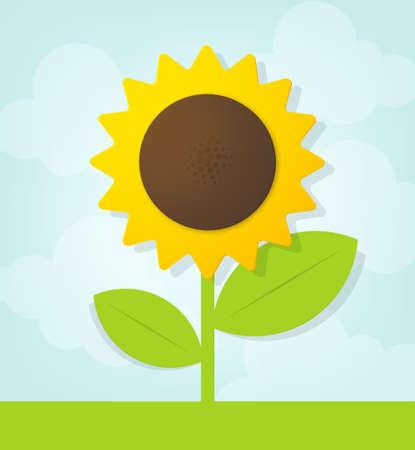 vector sunflower 向量圖像