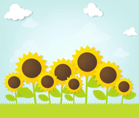 sunflower field: Sunflowers under blue sky Illustration