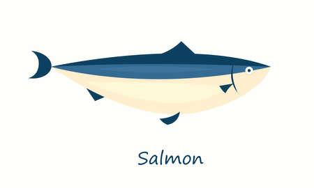chinook: Salmon fish isolated