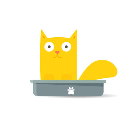 feces: Cat sitting in litter box. vector illustration Stock Photo