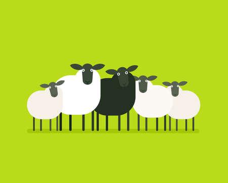 Mouton noir dans le troupeau