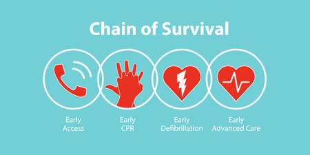 The survival chain. 矢量图像