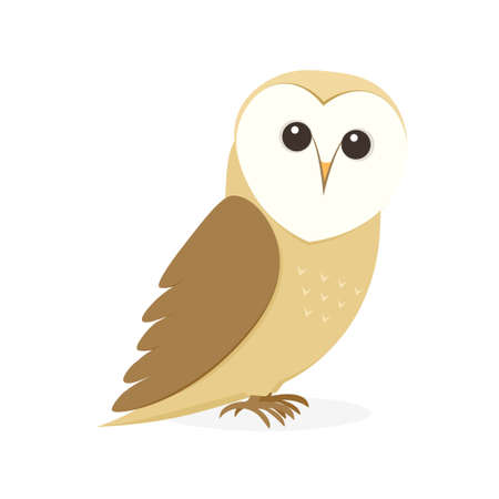 Cartoon Barn Owl