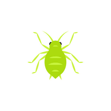 Aphid icon . Clipart image isolated on white background