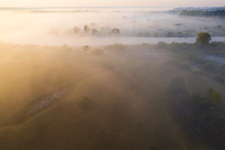 Summer landscape of river in morning fog. Foggy nature in sunlight. Aerial view of wild green nature of riverside.