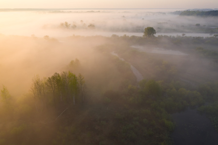 Scenic summer foggy nature from above. Aerial view on river shore with trees in sunshine. Nature landscape