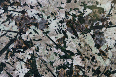 The texture of polished stone. White surface with various shades, mostly green stripes