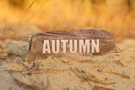 Time and finance concept. In the sand against the background of yellow grass there is a sign with the inscription - AUTUMN