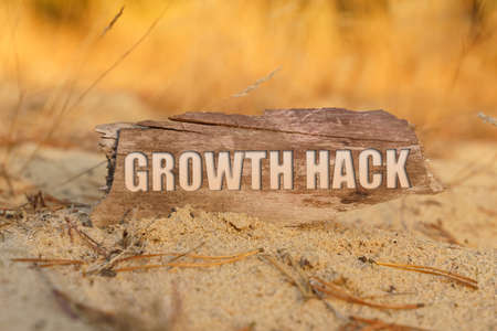 Concept, business and finance. In the sand against the background of yellow grass there is a sign with the inscription - GROWTH HACK 免版税图像