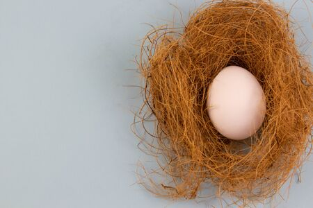In the nest there is one white chicken egg on a background. place for text, easter holiday concept.