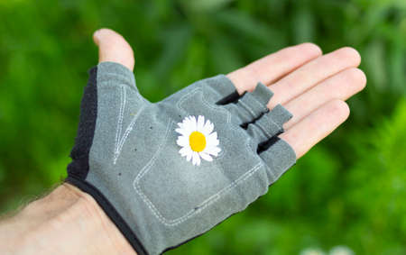 hand in glove with flower in palm on green background.