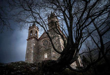 Mittelalterliches Schloss romanisch mit altem totem Baum