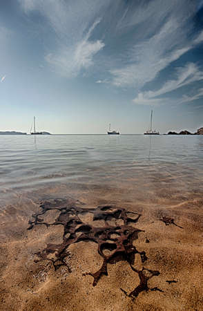 Beautiful sea shore landscape at menorca, balearic Islands cala pregonda 版權商用圖片