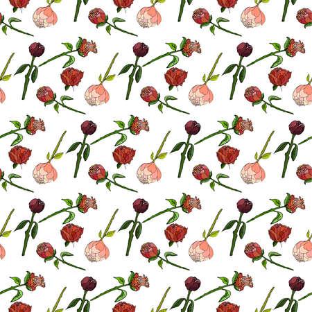 Seamless floral pattern with peonies. Vector illustration. Ilustração