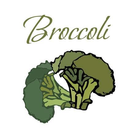 Illustration of Tasty Veggies. Vector Broccoli Isolated on a White Background Ilustrace