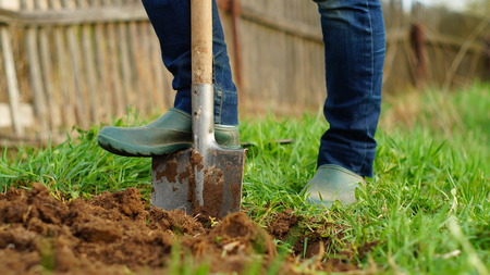 woman is digging the ground at her garden using a spade