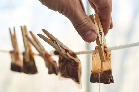 Male hands are hanging used tea bags as washed clothes for drying on the clothesline with clothes pegs Stock Photo