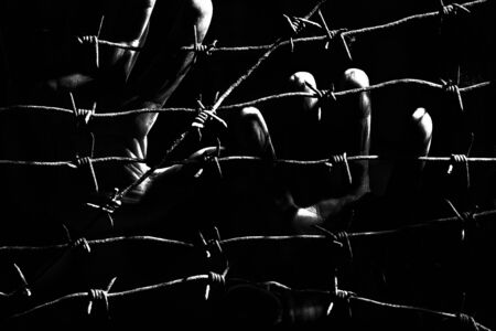 Palms of human hands behind barbed wires in the dark of the night lit by the hard light of the prison lamps. Unfreedom concept. Black and white photo. Banco de Imagens