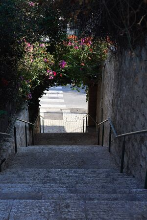 View of the descending of stone steps with beautiful bougainvillea flowers in Israeli town Haifa in november.