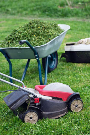 Lawn mower, grass container and a garden wheelbarrow full of trimmed grass on the mowed lawn