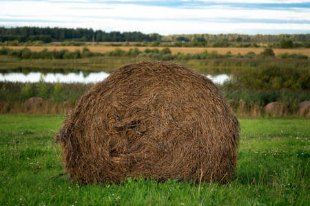 Summer landscape with a hay bale on the green meadow in front of a river in summer Stock Photo