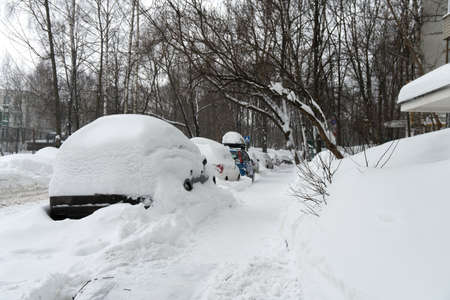 Cars covered with snow after a hard blizzard in winter Foto de archivo