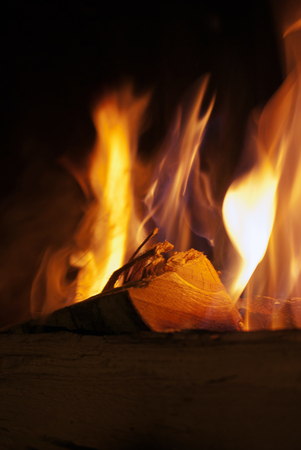 campfires: Close-up of wood burning in fire at night  Stock Photo