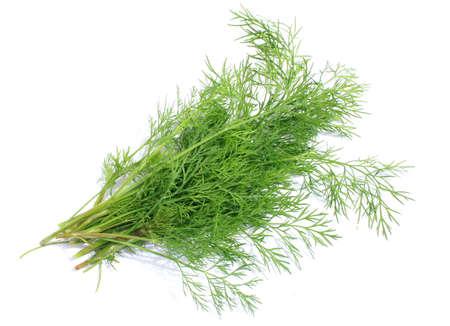 Bunch of fresh green dill