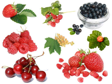 berries collection isolated on a white background Stock Photo - 8864237