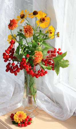 guelder rose: autumn bouquet